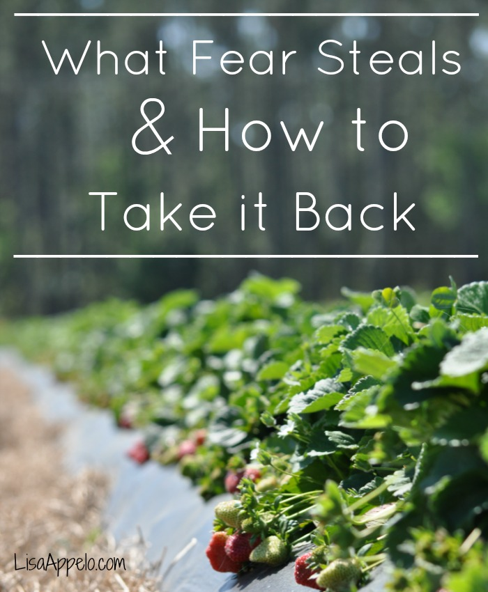 what fear steals post