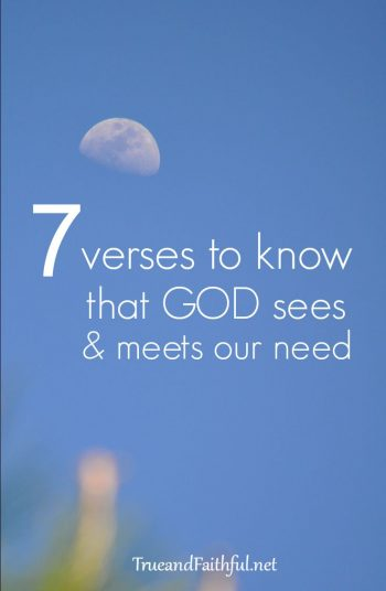 7 verses to know God sees & meets our need.