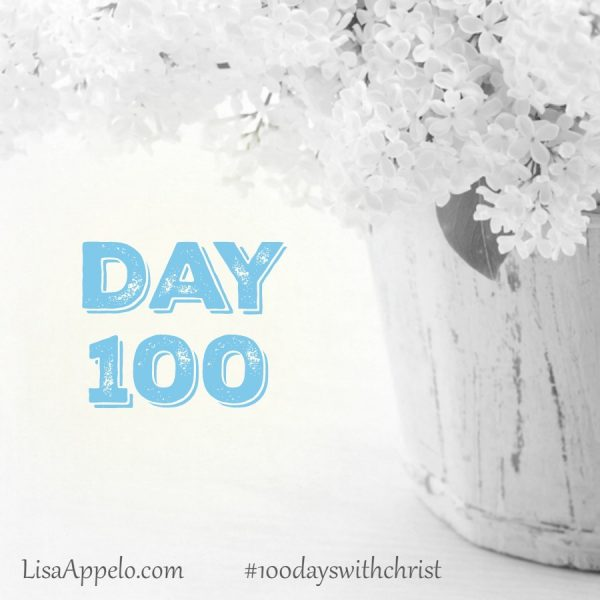 100 Days with Christ bible study | gospels | life of Jesus