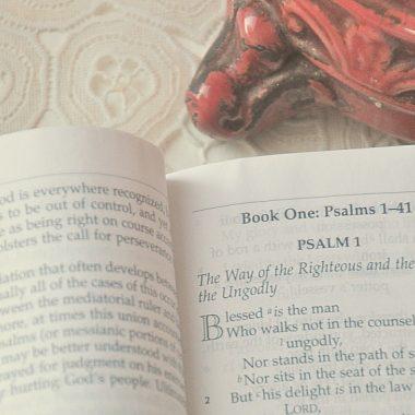 memorize scripture | scripture memory | memorize Bible verses | family | kids