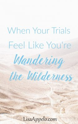 3 truths when you're wandering the wilderness | spiritual wilderness | trials in wilderness