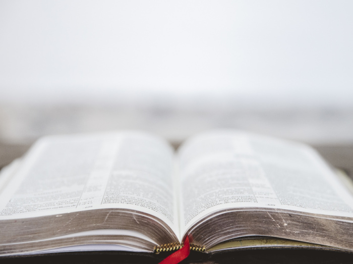 How to choose a Bible Reading Plan